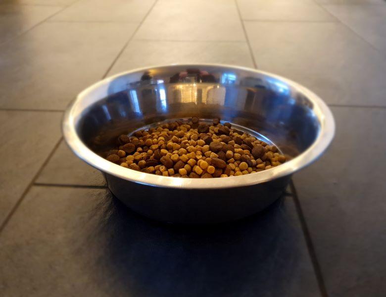 Artgerechte Hundeernährung